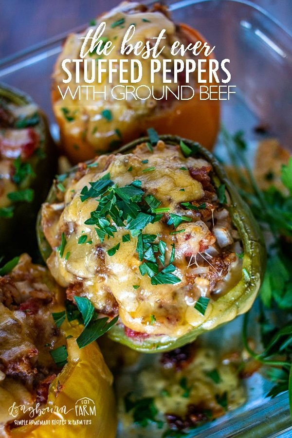 #sponsored Easy stuffed peppers are a family favorite and packed with hearty ground beef and amazing flavor. They also make a great first food for growing little ones. @beeffordinner, #BeefItsWhatsForDinner and #NicelyDone #BeefFarmersandRanchers #groundbeef #groundbeefrecipes #beefrecipe #beefdinnerrecipe #groundbeefdinner #stuffedpeppers  #stuffedpepperseasy  #stuffedpeppersbest  #stuffedpeppersclassic  #stuffedpeppersrecipe