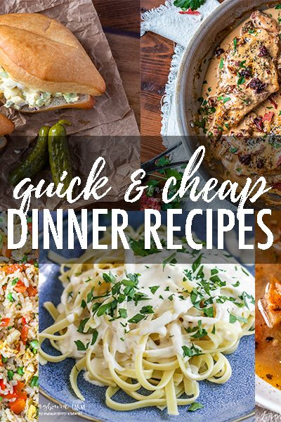 Over 20 Quick & Cheap Dinner Ideas