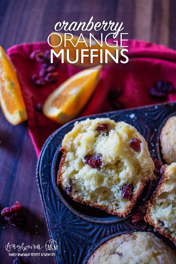 Orange cranberry muffins hold all the amazing flavors of the holidays in one easy to eat package!! These muffins are quick, easy, and festive! #orangecranberrymuffins #orangecranberrymuffinseasy #orangecranberrymuffinsmoist #orangecranberrymuffinsdried #orangecranberrymuffinsbest #orangecranberrymuffinsrecipe #orangecranberrymuffinscrasins #baking #bakingrecipe #muffins #bakingmuffins #bakingallday #bakingday via @longbournfarm