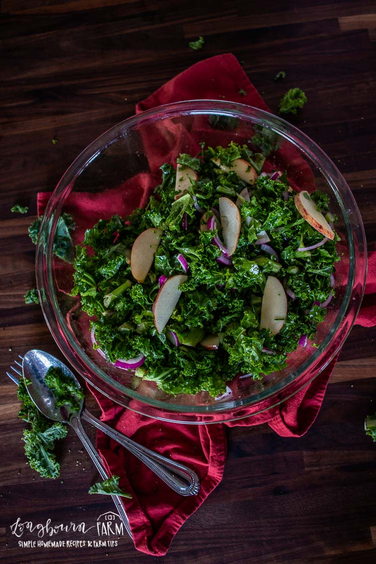 Vertical image of Kale apple salad in a bowl sitting on a red towel.