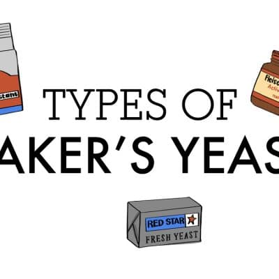 types of bakers yeast with different images of yeast containers