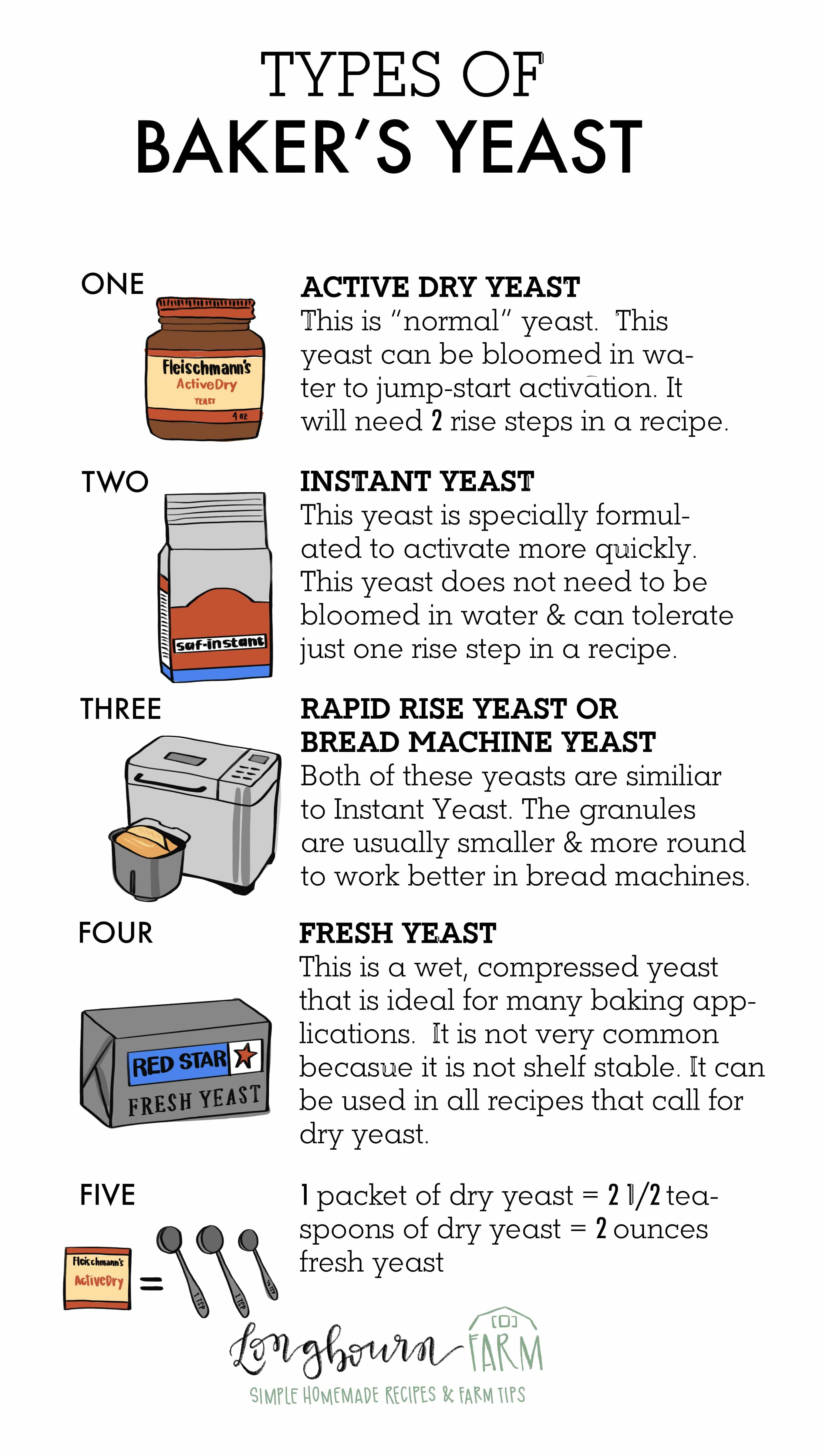 Do you know the different types of baker's yeast and when to use them? Read this post to know exactly what type of yeast you should use and when! #yeast #yeastrecipes #yeastbread #activedryyeast #instantyeast #whatisyeast #bakingyeast #yeastpacket