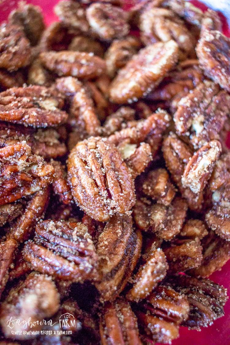Close-up rum spiced pecans.