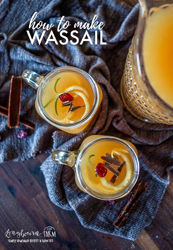 Learning how to make wassail is easy! Create a delicious, festive, drink with just a few ingredients and a little bit of time. #wassail #homemadewassail #wassailrecipe #cider #applecider #howtomakewassail #homemadecider #mulledcider via @longbournfarm