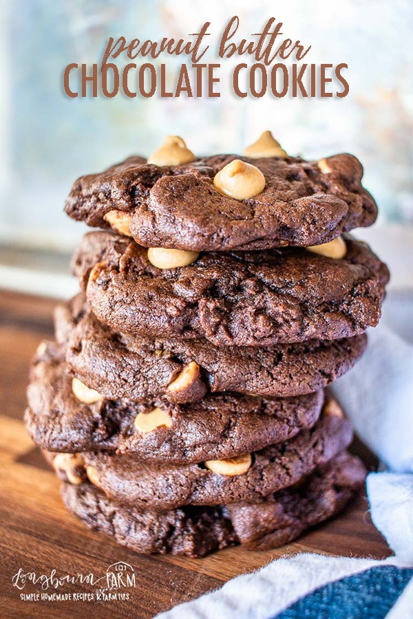 Chocolate peanut butter cookies are an easy and delicious flavor combination! Whip these up in just a few minutes - they are a total crowd pleaser! #cookies #chocolatepeanutbutter #peanutbuttercookies #chocolatecookies #chocolatepeanutbuttercookies