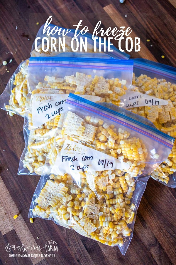 Learn how to freeze corn on the cob so you can save your abundance of fresh corn! This method is easy and quick and much easier than canning. #corn #cornonthecob #freezecorn #storingcorn #howtofreezecorn #freezingcorn #howtostorecorn