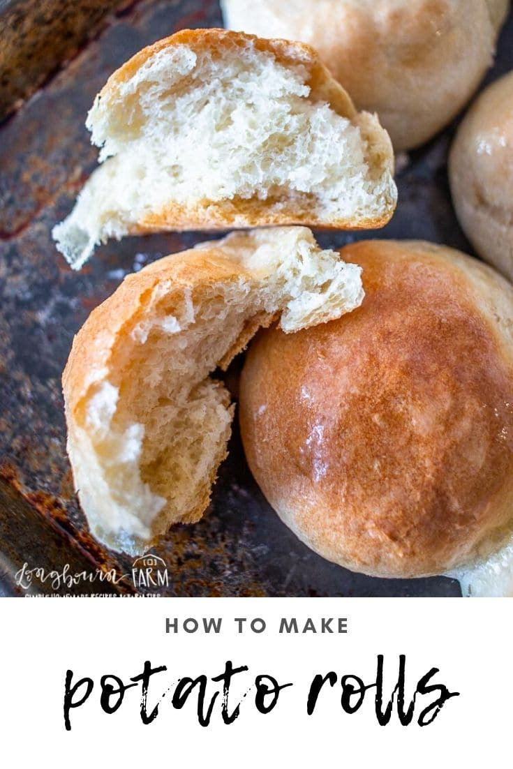 Potato rolls are easy to make and turn out perfectly every single time! Whip up a batch and freeze some for later. These are sure to be a hit!
