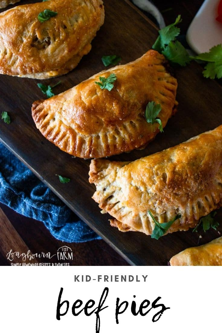 (Sponsored) Savory beef hand pies are a delicious and easy meal to make with your family! Let the kids help you and they'll be even more excited to eat. @beeffordinner #BeefItsWhatsForDinner #NicelyDone #beeffarmersandranchers