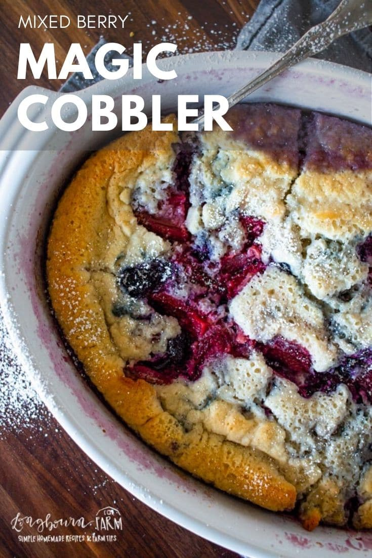 Mixed fruit cobbler is the perfect dessert for any time of year! Easy to make and even easier to eat. Soft crust with lots of fruit underneath.