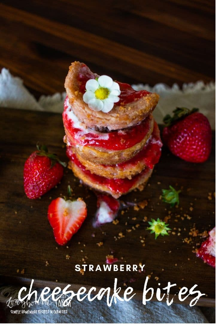 Smooth, creamy strawberry cheesecake bites are a delicious individual sized dessert for any occasion. Made with fresh strawberries and homemade crust!
