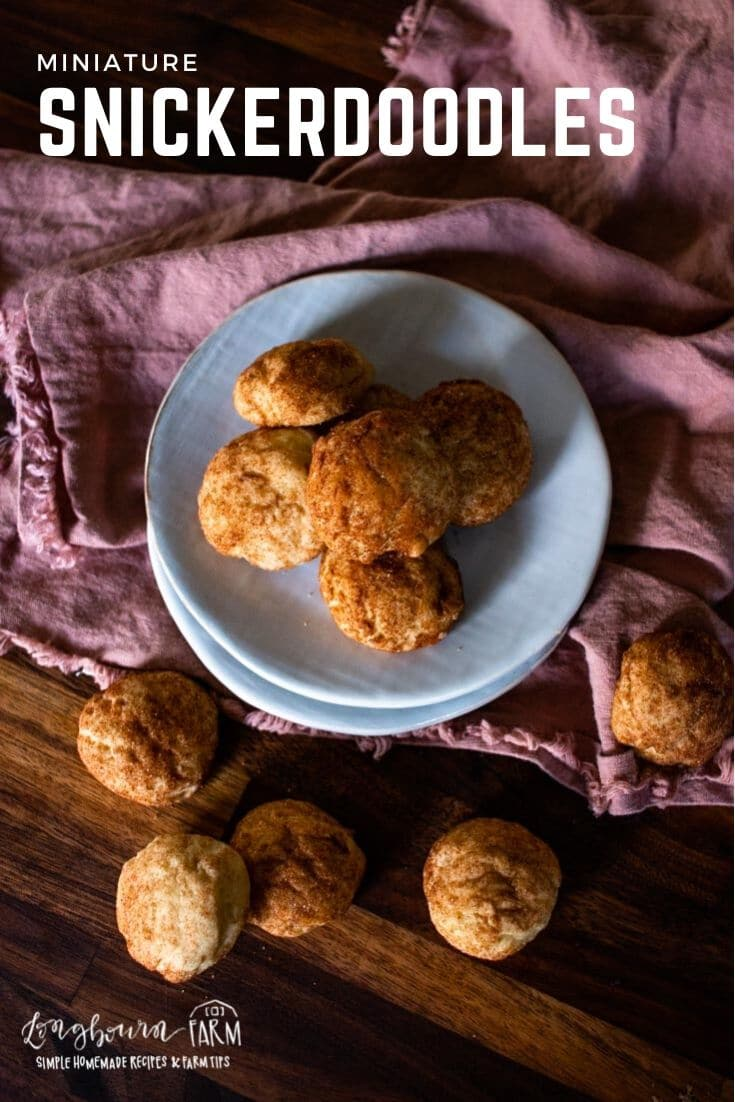 Mini snickerdoodles are a sweet treat in every bite. Soft, chewy, with a hint of tart. Easy to eat and even easier to make!