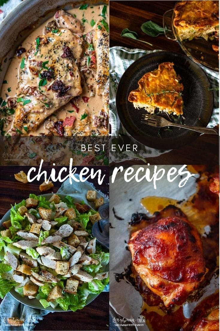 Chicken is a kitchen staple and there are so many great, easy, chicken recipes that are a breeze to whip up!