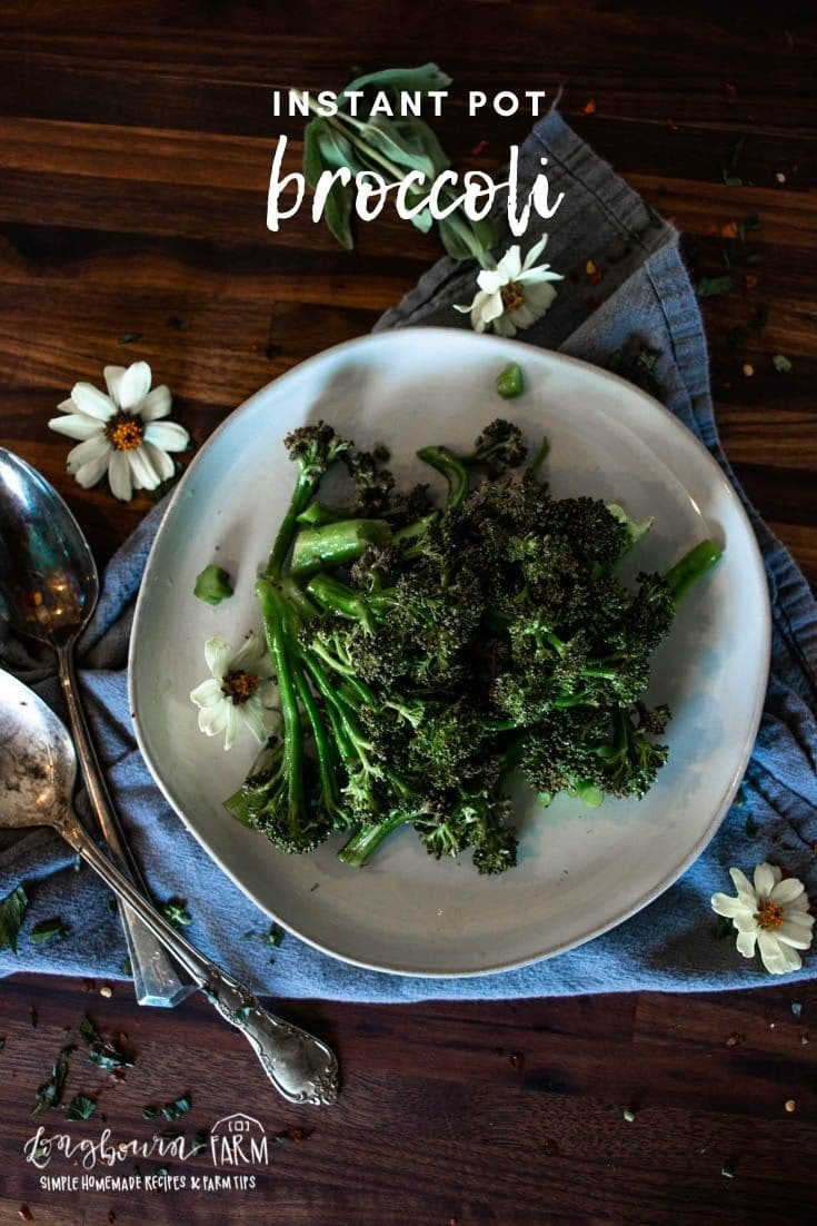 Instant Pot steamed broccoli is a delicious and easy way to get more vegetables on the table. It is fast and packed with flavor!