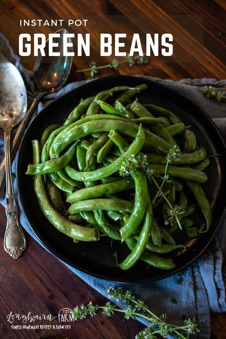 Instant Pot green beans are a super simple and easy way to make a delicious vegetable side dish for dinner.