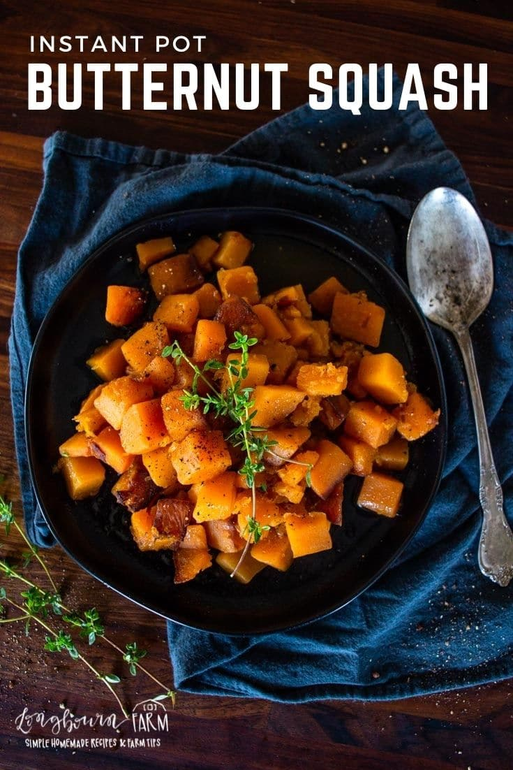 Cinnamon butternut roasted squash is a delicious sweet spiced side dish that your table is missing. Easy to make in the Instant Pot!