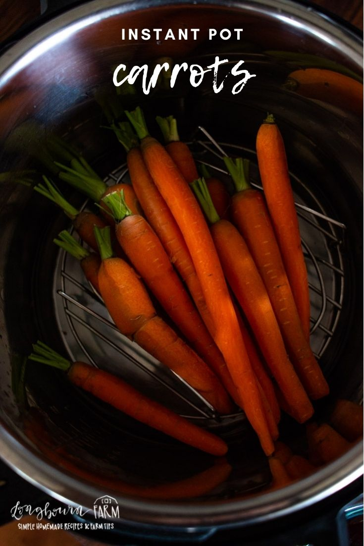Instant pot carrots are a delicious and easy recipe. Perfect for a weekend or holiday, they are sure to impress!