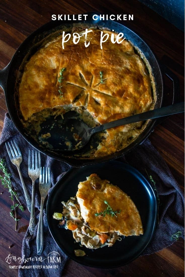 Skillet chicken pot pie is a comfort meal in a pan! Made all in one pan and finished in the oven, it's a delicious mess-free dish.