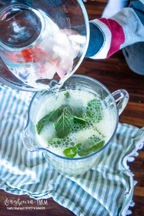adding liquids to a pitcher full of mint leaves