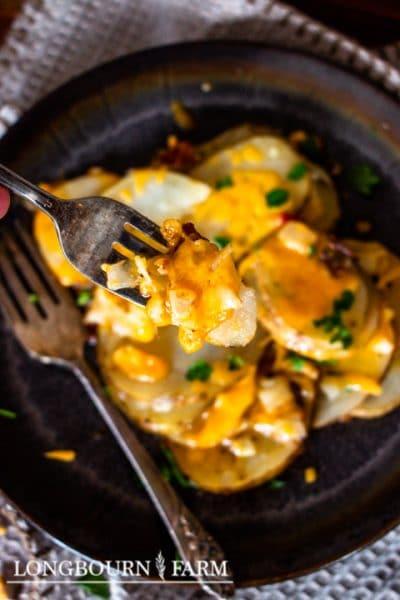 Dutch Oven Potatoes {+ The Oven Recipe}