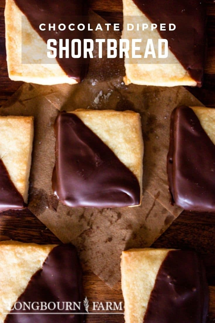 Chocolate dipped shortbread cookies are a timeless classic treat perfect for any occasion with their buttery, melt in your mouth texture!