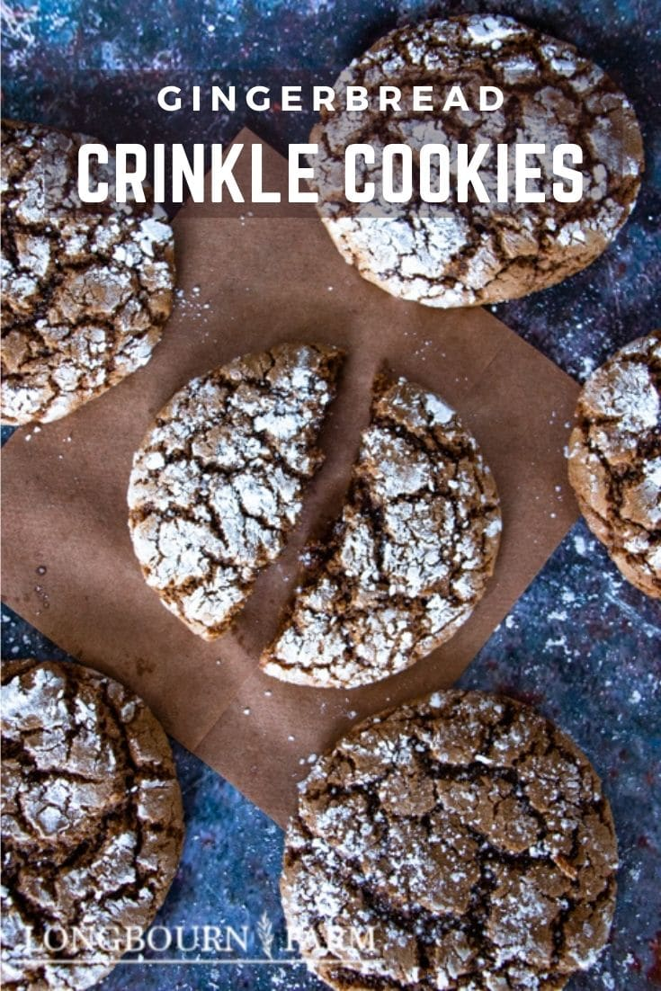 These gingerbread crinkle cookies are the perfect holiday treat. Packed with flavor in every bite and so easy to make, you'll be wondering where they've been all your life.